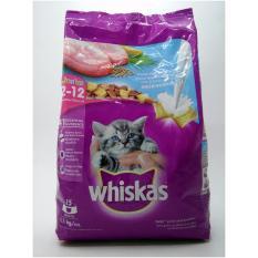 Harga Makanan Kering Kucing Whiskas Junior 1 1Kg Terbaru