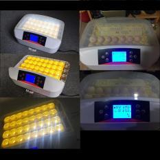 Mesin Penetas Telur Otomatis