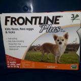 Jual Obat Kutu Frontline Plus Dog 10Kg Import