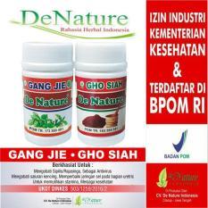 Promo Obat Sipilis Kencing Nanah Gonore Herbal Alami De Nature Akhir Tahun