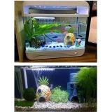 Harga Pentaq 1 Aquarium Resin Mini Pineapple House Lansekap Ikan Tankornament Dekorasi Oem Asli
