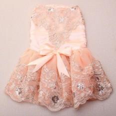 Stainless Steel Buah Anjing Peliharaan Pernikahan Tutu Dress Anak Rok Renda Putri Apparelcostumeclothes-Intl