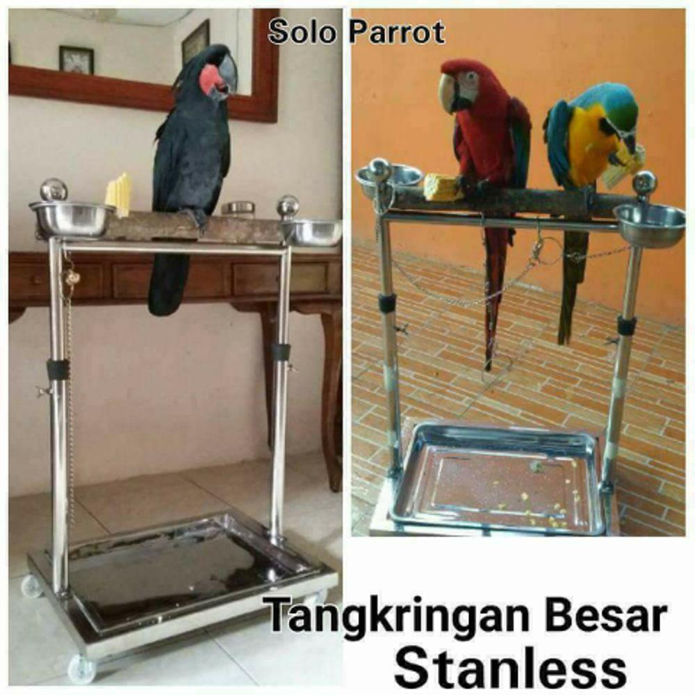 Penjualan Perch Stanless Burung Macau/Kakatua/Parrot terbaik murah - Hanya Rp599.300