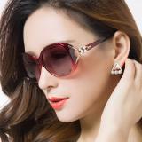 Jual Xanlon Kacamata Hitam Polarisasi Wanita Online Di Tiongkok