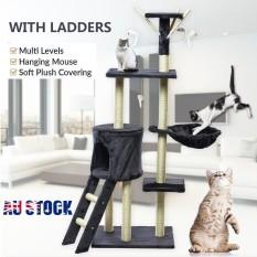 Peliharaan Kucing Kitten Scratching Post Pohon Scratcher Tiang Furniture Gimnasium Rumah Mainan Grey-Internasional