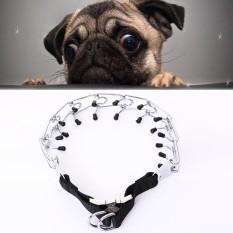 Hewan Peliharaan Anjing Kualitas Tinggi Logam Rantai Yang Dapat Disesuaikan Pelatihan Khusus Anjing Rantai Kerah Ukuran