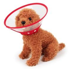 Harga Pet Pelindung Anti Gigitan Pet Cincin Kerah Hewan Peliharaan Anjing Kucing Leher Kerah Penutup Merah Intl Yang Bagus