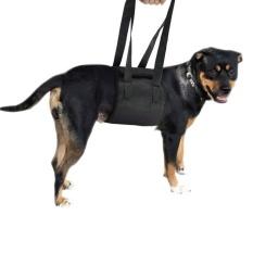 Portable PET Auxiliary Belt Rehabilitasi Harness Membantu Sling-XL-Intl