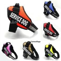 rainbow-site-new-popular-training-vest-with-patches-for-medium-large-dogs-dog-harness-comfortable-pet-2017-fashion-reflective-nylon-service-xxs-xxl-purple-m-intl-0656-417889121-6e7403d18c9948e40374d4faaafc0af4-catalog_233 Koleksi Harga Gaun Pesta Muslim Ala Dian Pelangi Terlaris tahun ini