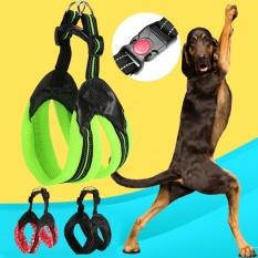 Jual Reflektif Mesh Padded Pet Dog Harness Dengan Lembut Padded Safety Lock Gesper Hitam Internasional Not Specified Online