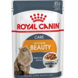 Beli Royal Canin Intense Beauty In Gravy 85 Gr 12 Pcs Cicilan