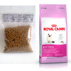 Jual Royal Canin Kitten Repack 500 Indonesia Murah
