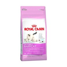 Review Royal Canin Mother And Baby Cat Food Makanan Kucing 400 G Royal Canin Di Di Yogyakarta