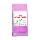 Harga Makanan Kucing Royal Canin Mother And Baby Cat Food 400 G Online Indonesia