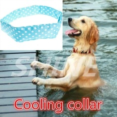 Jual Shine Fashion Pet Collar Ring Point Pet Heatstroke Kerah Pendingin Biru Intl Lengkap