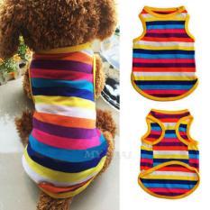 Pakaian Lembut Garis-garis Peliharaan Anjing Pelangi Rompi Pakaian Kaus Anak Anjing Kostum M-Internasional
