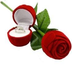 Spicegift Tempat / Box Cincin Bunga Mawar Merah