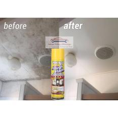 Spray Pembersih Noda Pada Karpet Mobil / Jok Beludru / Plafon Atap Dalam Mobil - WAXCO TOUGH STAIN 500 Gram - Perawatan Interior Mobil WITH LEMON FRAGRANCE