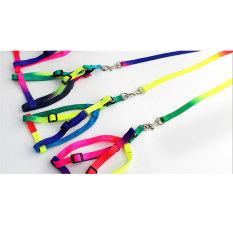 Jual Memperkuat Pet Cat Colorful Harness Leash Tali Traksi Nylon Multicolor Aukey Asli