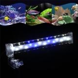 Dapatkan Segera Tomsoo 1 Pc Crystal Led Aquarium Tangki Ikan Clamp Klip Lampu Light Pencahayaan Ornamen Dekorasi Baru M Internasional