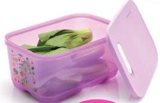 Tupperware Ventsmart  4.4L (Purple)
