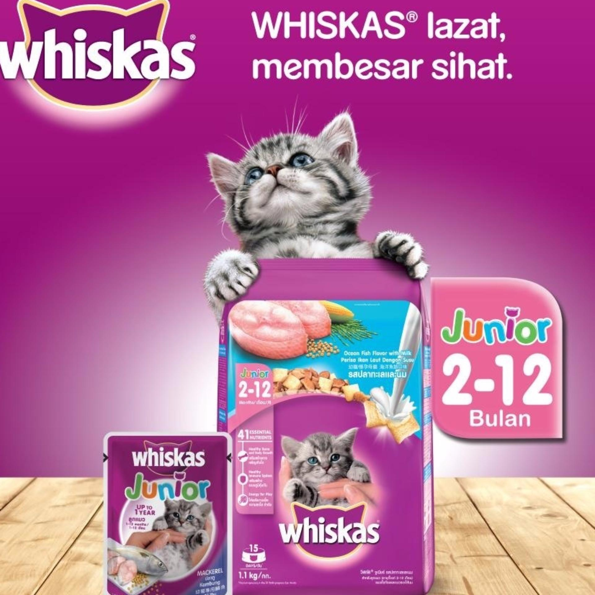Harga preferensial 1 Pouch Whiskas Junior Mackarel 85 Gr / Makanan Kucing / Cat Food /