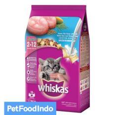 Spesifikasi Whiskas Junior Ocean Fish Milky Dry 1 1 Kg Bagus