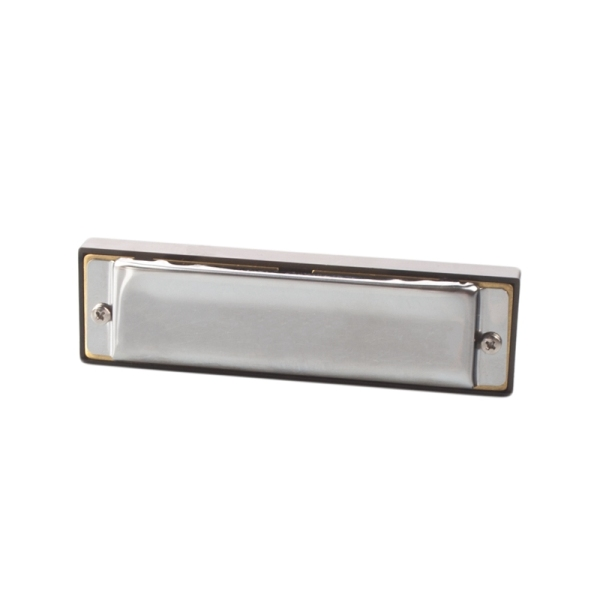 Excellent Melodica Harmonica C 10 Holes Metal Tremolo Stainless Steel Brass