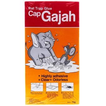 Gajah Lem Perangkap Tikus 75G