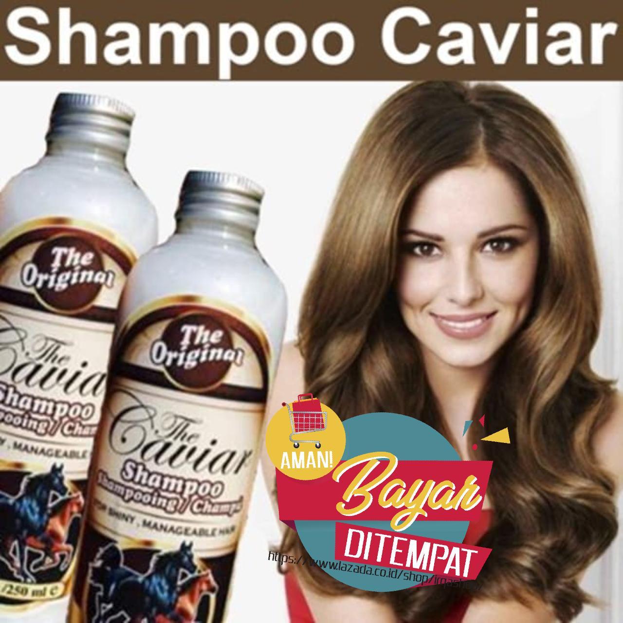 Shampoo Penumbuh Rambut - The Caviar Shampoo Kuda Caviar 100% Original BPOM - Sampo Penumbuh