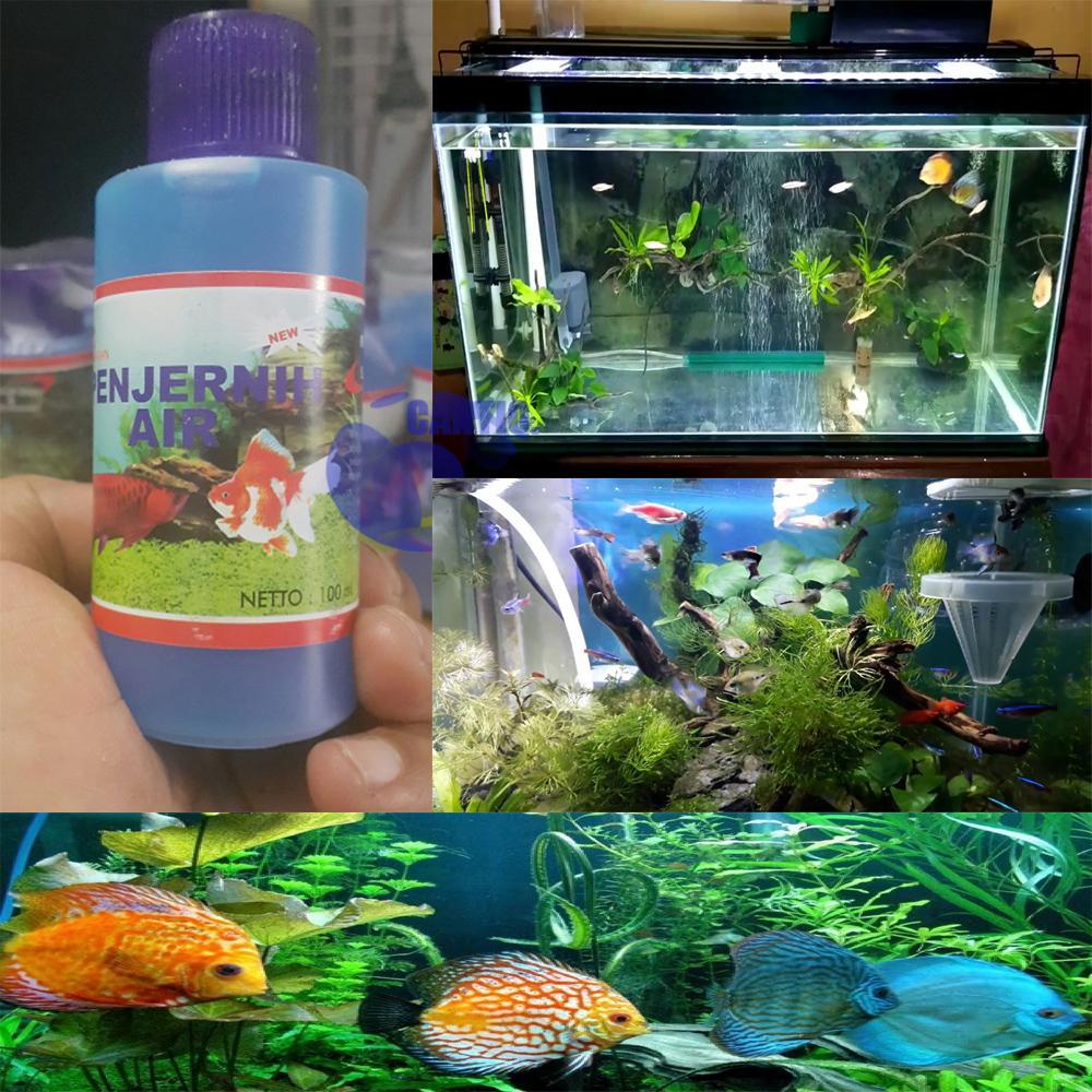 Water Cleaner Aquarium / Penjernih Air Aquarium Akuarium Aquascape Penjernih Air Kolam Ikan Koi Penjernih Air Mencegah Stress Dan Penyakit Ikan Koki / Ikan Hias By Cantiq..