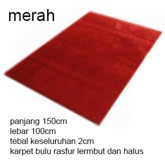 Karpet Bulu Lembut 100x150x2cm By Shanti_olshop.