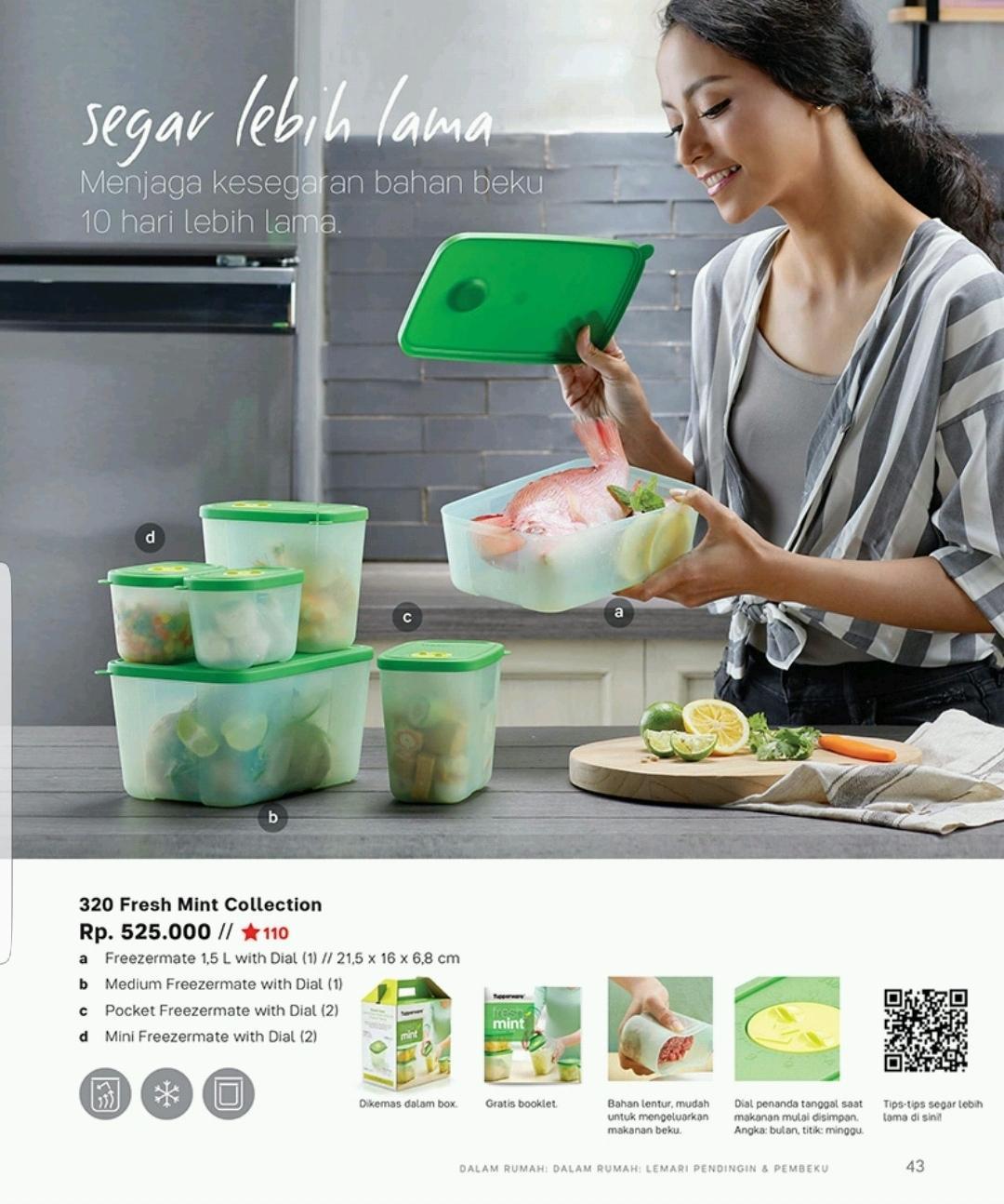 Tupperware Medium Freezermate WIth Dial Green 1pcs. Source · Tupperware - Freshmint Collection