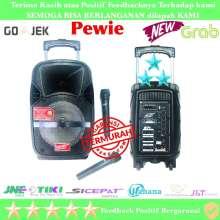 PORTABLE SPEAKER PA TR 560 8 inch double mic wireless