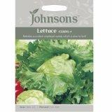 Ulasan Bibit Bunga Benih Johnsons Seed Lettuce Iceberg 4