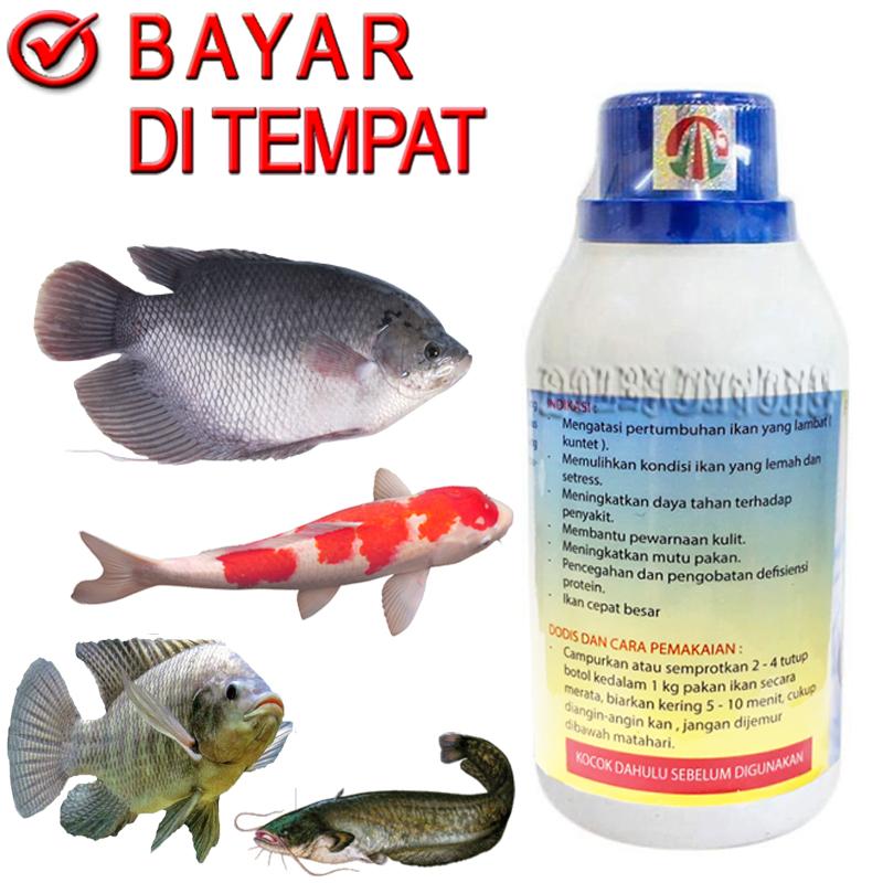 Amino Pro Vitamin Penambah Nafsu Makan Ikan Mas Lele Gurame Patin Nila Udang Obat Gemuk Lazada Indonesia