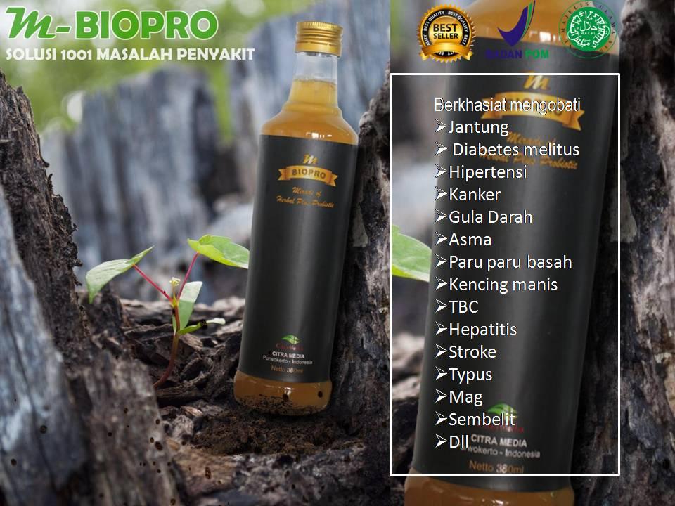 obat-obatan herbal untuk penyakit diabetes basah