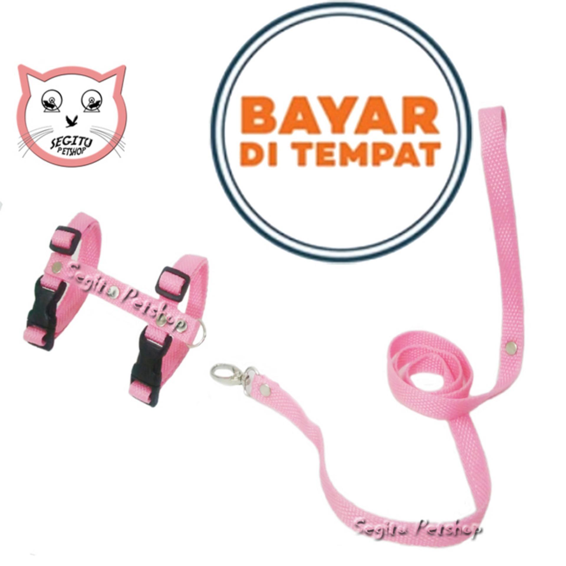 Tali Tuntun Harness H Kucing Musang Kelinci Hewan By Bang Gode-.