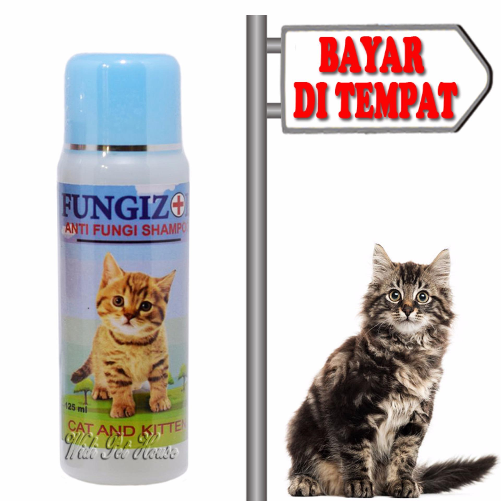 Shampo Kucing Anti Jamur Sampo Kitten Scabies Fungizol By Widi Pet House.