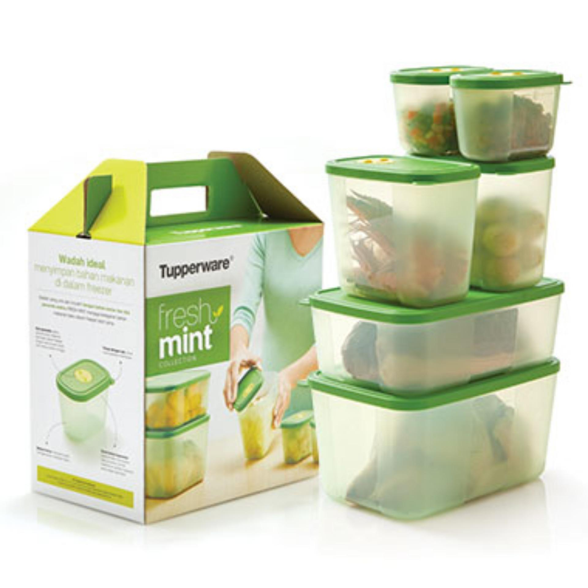 Tupperware Freshmint Collection wadah untuk freezer total 6pcs