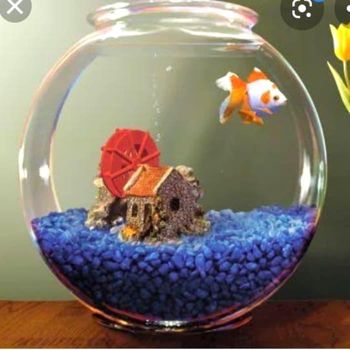 Aquarium Bulat Dan Toples 12 3l Sedia Toples Calista 1 Set Kaca Bening Plastik Besar Jumbo Kering Kue Tupperware Lebaran Ikan Cupang Unik Luminarc Lusinan Bulat Tinggi Harga Promo Khusus Terbatas Lazada Indonesia