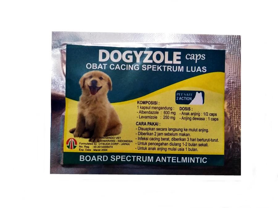 Obat Cacing Anjing Spektrum Luas Obat Cacingan Anjing Dogyzole Caps Kemasan Sachet Isi 1 Kapsul Lazada Indonesia