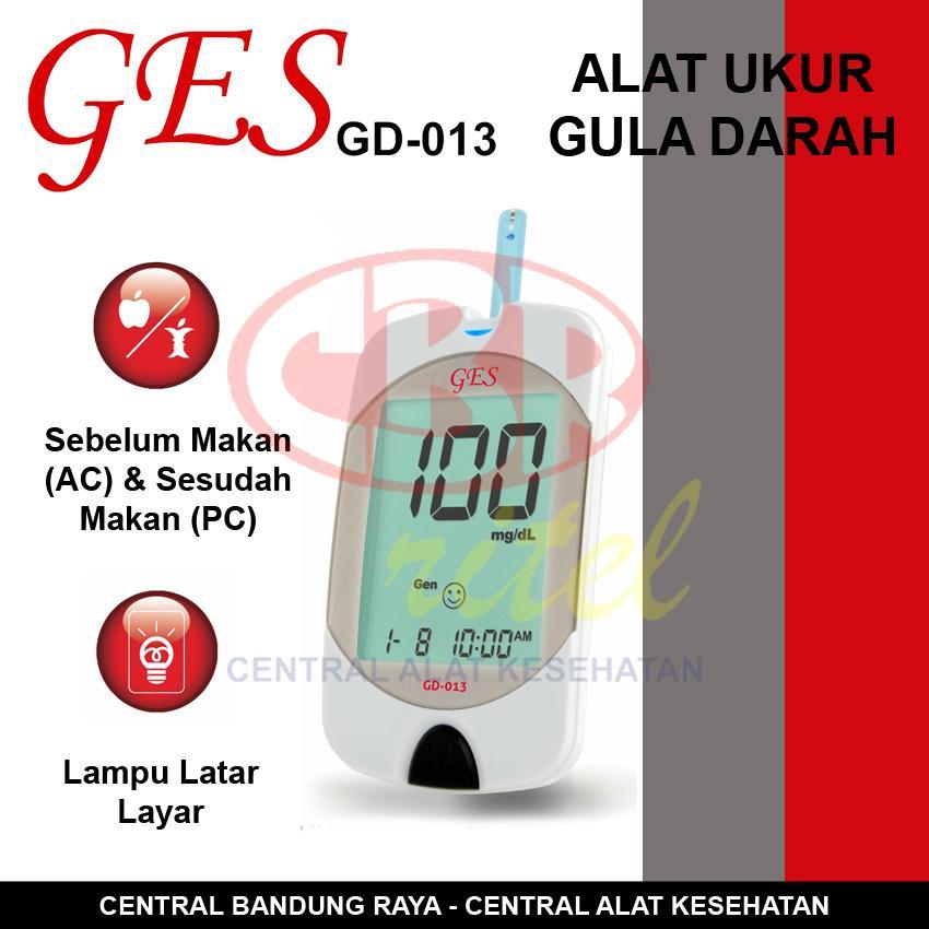 Paket Lengkap Alat Cek Gula Darah / Glucometer GES GD-013