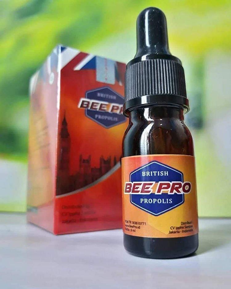 British Propolis Multi Premium Propolis Berkualitas Terbaik Beepro