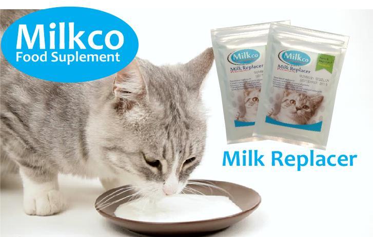 Jual Pengganti Susu Kucing Ternikmat Lazada Co Id