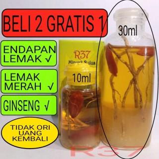 Minyak Bulus Ginseng Merah 10ml 30ml thumbnail
