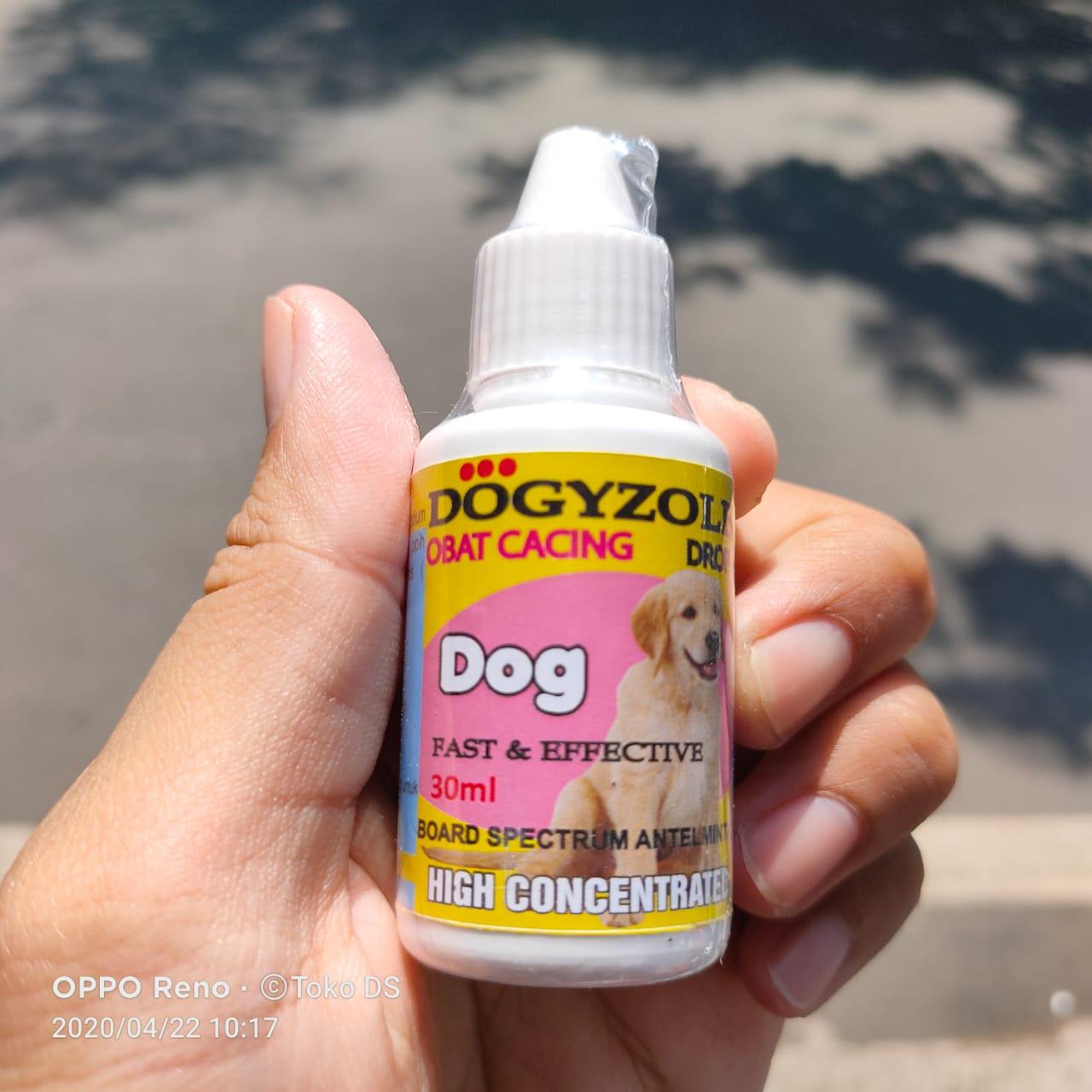 Dogyzole Drop 30ml Obat Cacing Anjing Liquid Obat Cacing Puppy Ampuh Lazada Indonesia