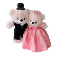 Istana Boneka Special Couple - 30 cm - Giovanny Pink c66ec2ecfc