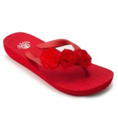 Review Megumi Sandal Jepit Wanita Aster Red Jawa Timur