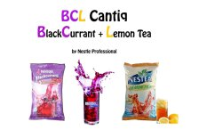 Spesifikasi Nestle Bcl Blackcurrant Lemon Tea By Nestle Professional Dan Harga